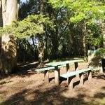Mesas parque